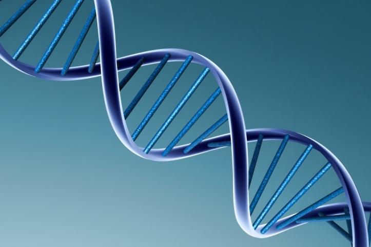 DNS spirál